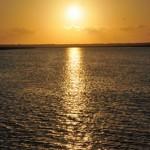 Staring-at-the-Sea-photo